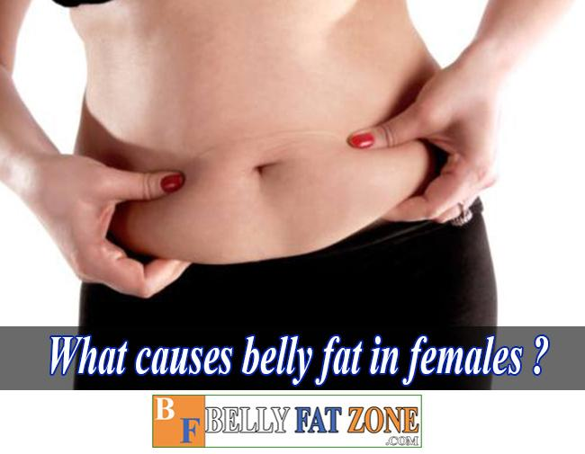 What Causes Belly Fat in Females?