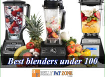 Top 16 Best Blenders Under 100 – 2021 – Can Help You Be a Good Homemaker