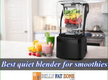 Top 8 Best Quiet Blender For Smoothies 2021 in The Market