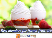 Top 14 Best Blenders For Frozen Fruit and Ice 2021