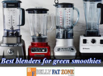 Top 19 Best Blenders For Green Smoothies 2021 for You Here