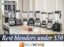 Top 20 Best Blenders Under $50 of 2021 – Optimized For Efficient Use