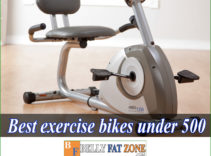 Top 15 Best Exercise Bikes Under 500 USD of 2021 will Make You Eager to Practice Anytime