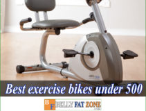 Top 15 Best Exercise Bikes Under 500 USD of 2021 Make You Eager to Practice Anytime