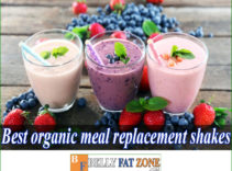 15 Best Organic Meal Replacement Shakes 2021 Delicious Waiting For You To Enjoy