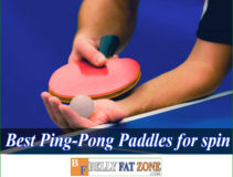 Top 15 Best Ping Pong Paddles 2021 For a Perfect Spin