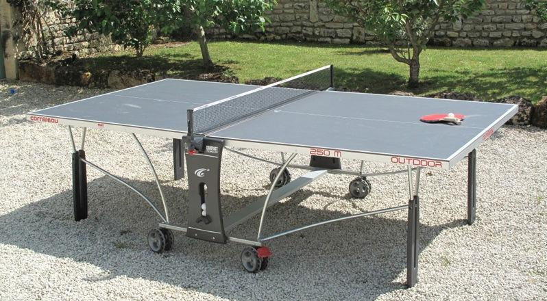 features of a good ping-pong table you will find the right product