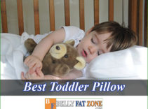 Top 19 Best Toddler Pillow 2021 For Your Great Angel Sleep