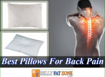 Top 15 Best Pillows For Back Pain 2021 – Really Helps You Feel Comfortable The Next Morning