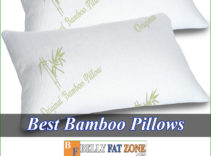Top 11 Best Bamboo Pillows 2021 Feeling Refreshed The Next Morning