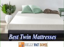 Top 15 Best Twin Mattresses 2021 Cozy Comfortable Space For You