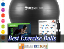 Top 18 Best Exercise Balls 2021 Help You Practice Anywhere