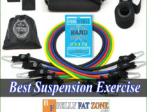 Top 16 Best Suspension Exercise Straps 2021 Help You Workout Under 5 Minutes