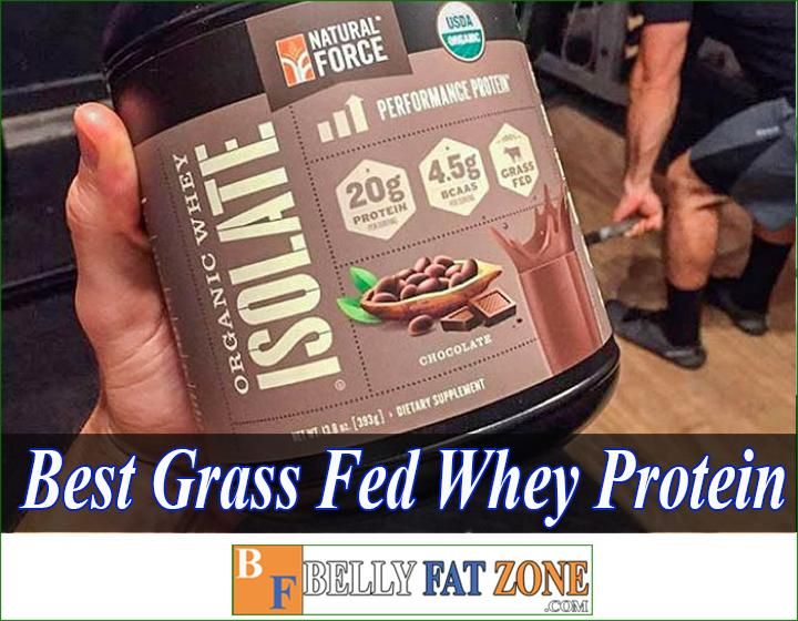 Top 19 Best Grass Fed Whey Protein 2021