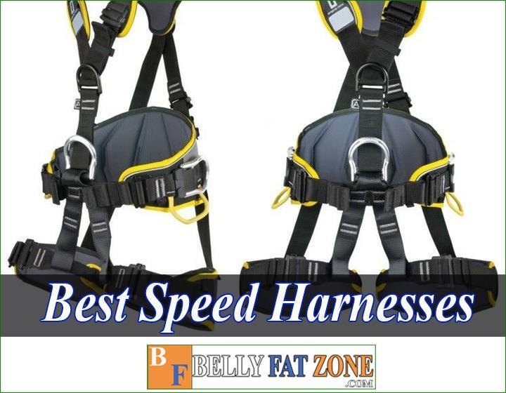 Top 14 Best Speed Harnesses 2021