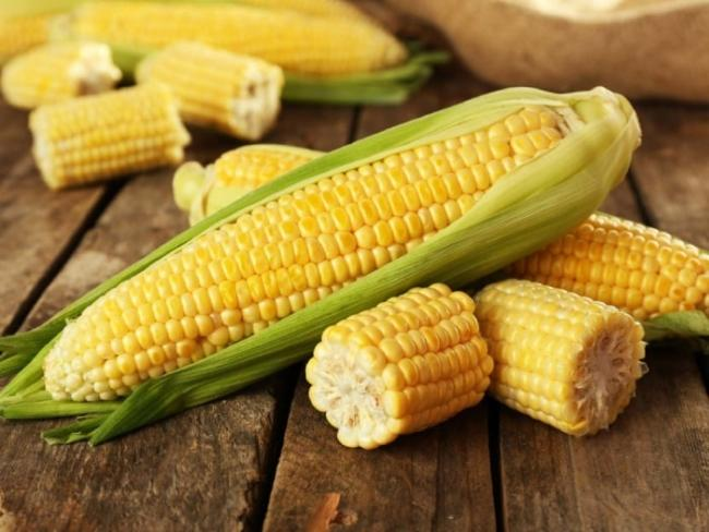 Here is the answer to what is the use of corn to eat.