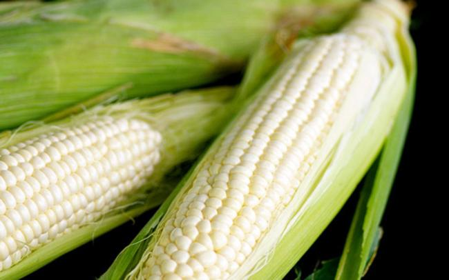 Eat corn boiled with fat evening it?