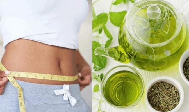 Drink green tea every morning to lose weight, lose belly fat