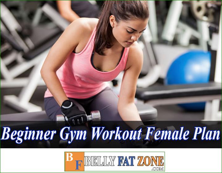 beginner gym workout female plan
