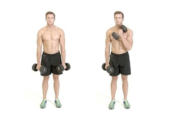 Exercise folded squared dumbbells.
