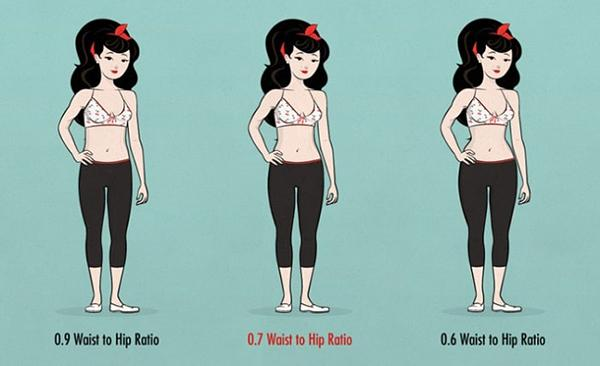 Need to determine the fat percentage, body mass index and waist ratio before starting to exercise women gym.