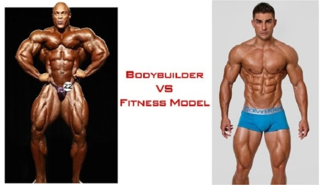 We will make a comparative comparison of the muscle formation of the BodyBuilder and Fitness Model for you to easily imagine.