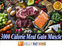 3000 Calorie Meal Plan to Gain Muscle For You