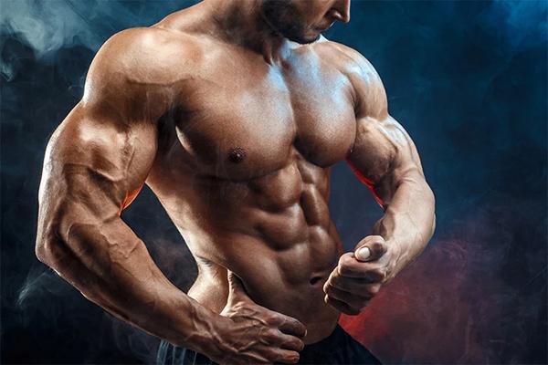 Develop large muscle mass
