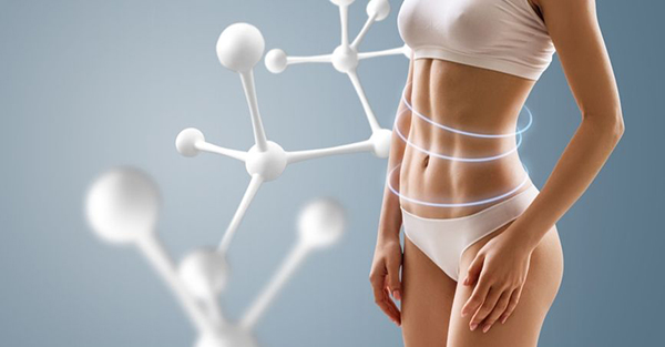 Enhance metabolism and increase the fat-burning ability