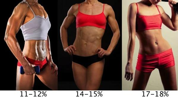 how to calculate body fat only with the naked eye