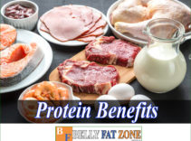Protein Benefits – Why is It an Important Protein for Weight Loss?