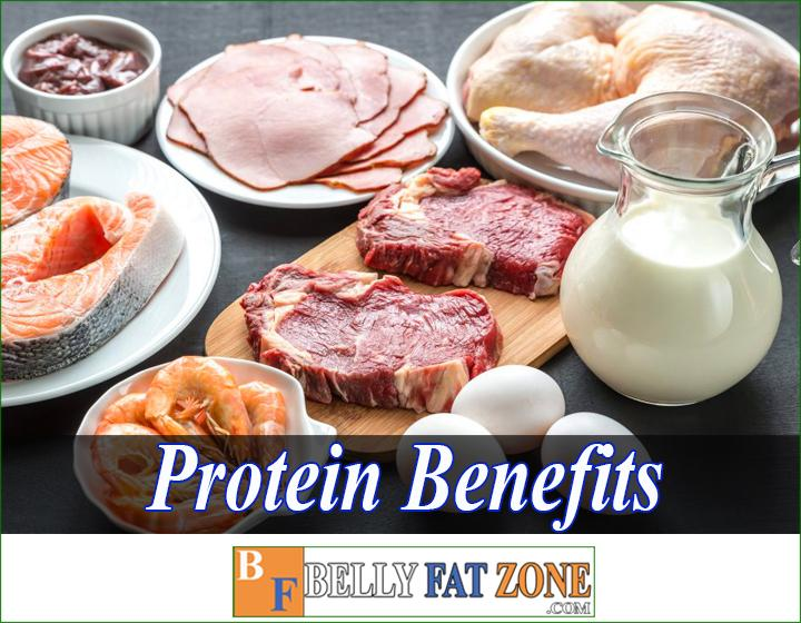 Protein Benefits - Why is an important protein for weight loss?