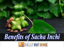 What are The Benefits of Sacha Inchi? For Belly Fat?