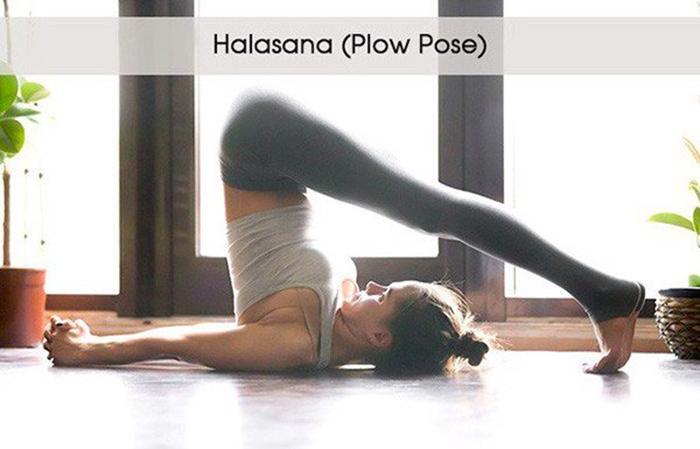 Halasana pose