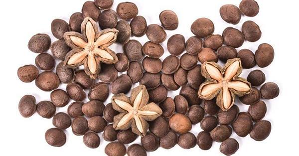 Sacha Inchi Protein