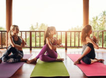 All the equipment to support your yoga practice