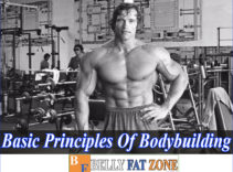 Basic Principles Of Bodybuilding – You Would Wish You Knew These Things First of All