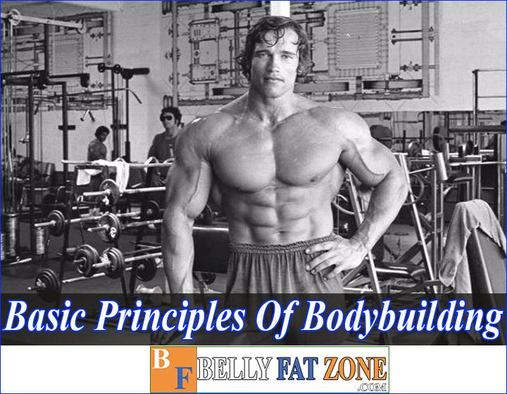 Basic Principles Of Bodybuilding - You Would Wish You Knew These Things First of All