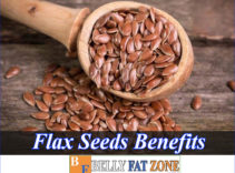 What Are Flax Seeds Benefits? Really Help for Weight Loss, Things You Need To Know