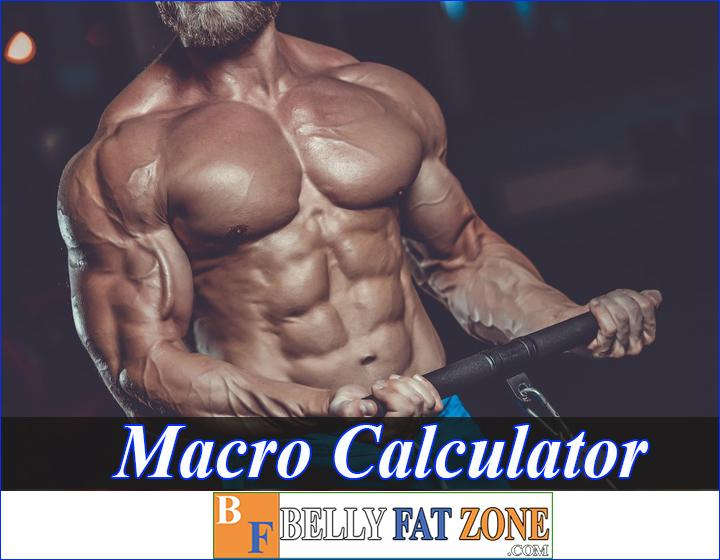 Macro Calculator for Muscle - Focus on Your Numbers