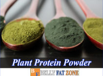 Plant Protein Powder – You Can Make It Yourself At Home
