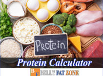 Protein Calculator – Are You Eating Too Many Protein-rich Foods?