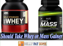 Should I Take Whey or Mass Gainer?