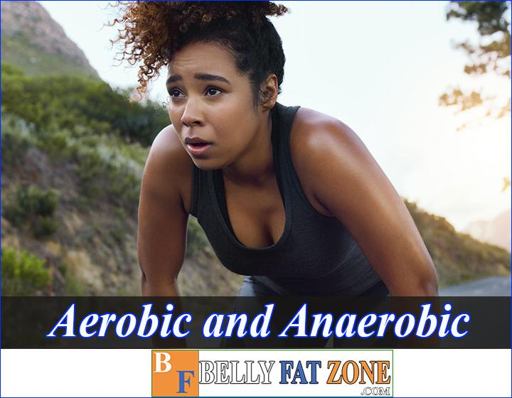 What Is The Difference Between Aerobic And Anaerobic Respiration