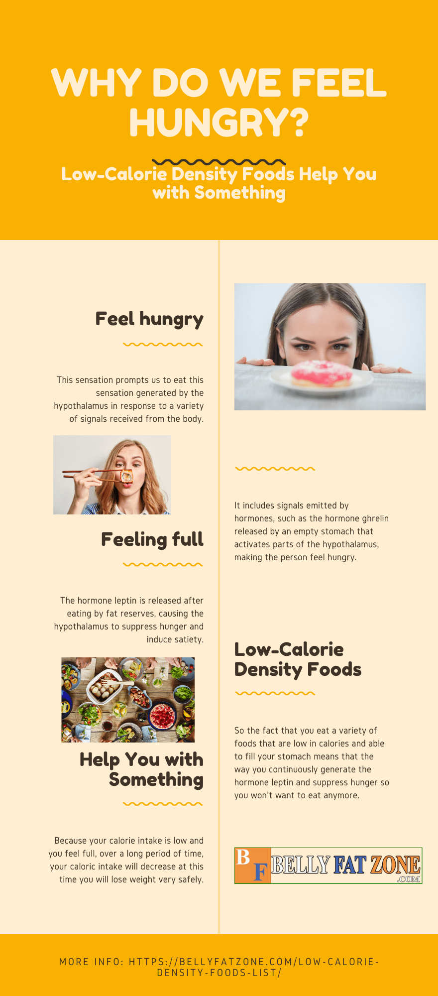 Why do we feel hungry - Low-Calorie Density Foods Help You with Something?